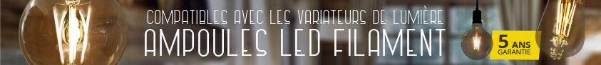 ampoules led filament e27 france